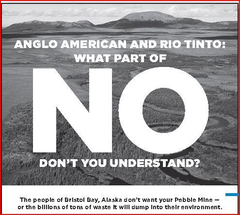 Stop Pebble Advert