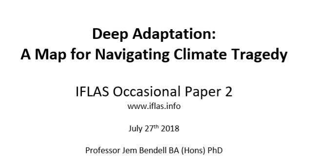 deep adaptation paper